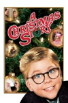 A Christmas Story wiki, synopsis