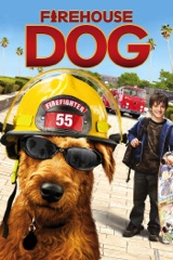 Firehouse Dog