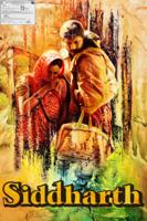 Richie Mehta - Siddharth artwork